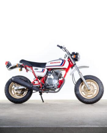 Honda Ape 50 wit rood goud