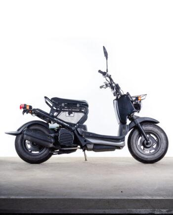 Honda Zoomer te koop