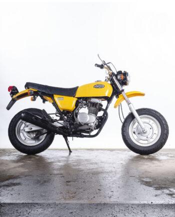 Honda Ape 100