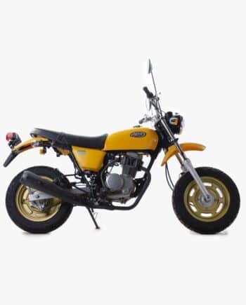 Honda Ape 100 geel 1073 PTX_1090
